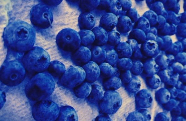 freeze blueberries
